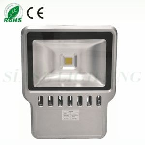 High Watt LED out Lighting (SS-FL-100W)