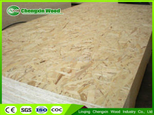 WBP Glue OSB and OSB3 1220X2440X6mm-18mm pictures & photos