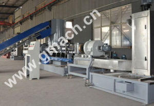 PP/PE Film Recycling Machine/Hydraulic Screen Changer pictures & photos