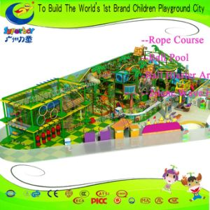 Shopping Mall Family Entertainment Center Indoor Playground pictures & photos