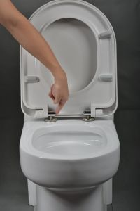 Bathroom Soft Close Toilet Seat Toilet Seat Lids pictures & photos