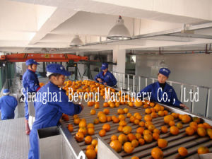 5t/H Concentrated Fruit Juice Production Line pictures & photos
