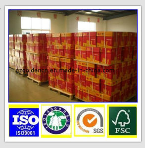 High Quality 70/75/80GSM Copy Paper pictures & photos