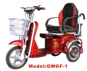 Gwgf-1 Electric Tricycle pictures & photos