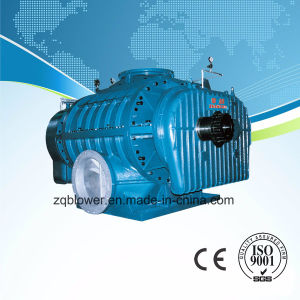 Big Size Roots Blower (ZR7-750A) pictures & photos