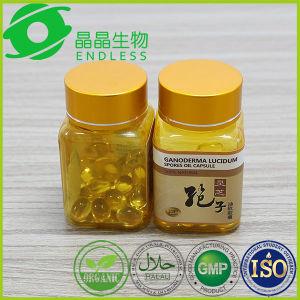 China Herbal Softgel Reishi Spore Oil Triterpene pictures & photos