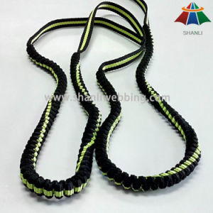 New Product, Jacquard Elastic Nylon Webbing Dog Leash pictures & photos