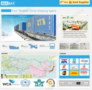 Sea Freight, Ocean Freight From Guangzhou/ Shanghai/ Ningbo/ Shenzhen to Australia pictures & photos
