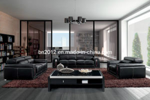 Living Room Genuine Leather Sofa (SBO-BZ-2992) pictures & photos
