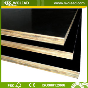 High Quality Film Faced Plywood for Construction (w15305)