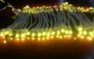 9mm DC5V LED Pixel Light String---Glue Seal Waterproof pictures & photos
