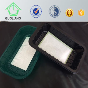 Thermoformed Commercial Disposable Plastic Container Frozen Food Packaging pictures & photos