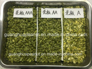 Hot Sale Shine Skin Pumpkin Seed Kernel New Crop pictures & photos