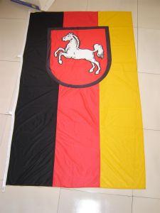 Festival Flag/Advertisement Flag/Decoration Flag/ Sports Flag (0012) pictures & photos