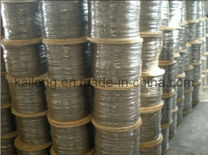 Stainless Steel Wire Rope (AISI304/316 1*19) pictures & photos