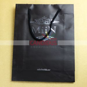 Quality Customized Paper Bags Shopping Bags pictures & photos