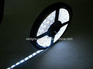 SMD5630 60LEDs/M LED Flexible Stripe Light Multi Color Avilable pictures & photos