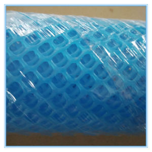 Plastic Flat Wire Mesh / Plastic Flat Net pictures & photos