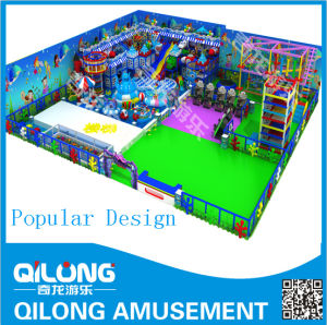 High Quality Business Indoor Playground Equipment (QL-150406A) pictures & photos