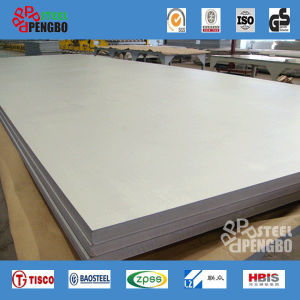 Expert Supplier of Stainless Steel Plate/Sheet pictures & photos