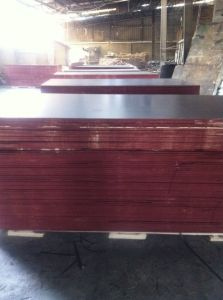 Brown Film Faced Plywood for Turkey pictures & photos