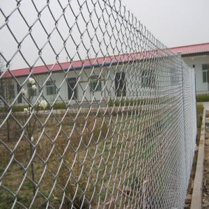 Diamond Brand Galvanized Chain Link Fence pictures & photos