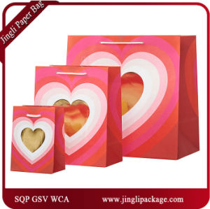 Daily Paper Gift Bags Shopping Gift Bags pictures & photos