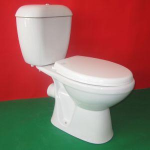 Washdown P-Trap Two Piece Toilet