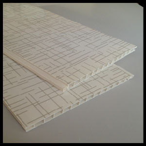 2014 Newest PVC Panel for Door (HN-D001) pictures & photos