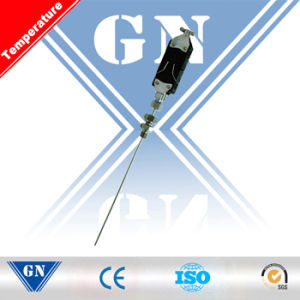 Flat Plug Type Armored Thermocouple (CX-WR) pictures & photos