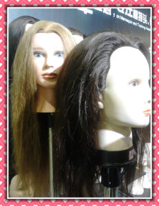 Human Hair Mannequin Head 18inches for Style Training pictures & photos