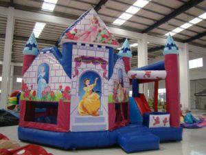 Good Quality Inflatable Castle for Kids (CL-002)