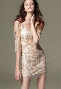 2015 Fashion Sexy Lace Embroidery Hollow Skirt for Women pictures & photos
