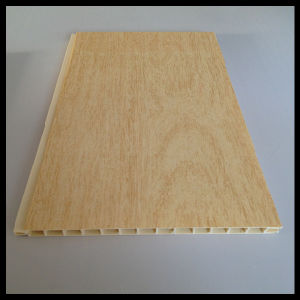 2014 Newest PVC Panel for Door (HN-D001) pictures & photos