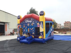 China Supply Inflatable Bounce Castle/Jumping Castle on Sale pictures & photos