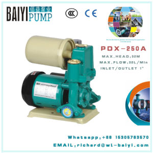 PDX Automatic Cold&Hot Water Self-Suction Pump pictures & photos