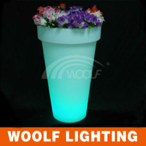 Wf-4895 Lighting Flower Pot pictures & photos