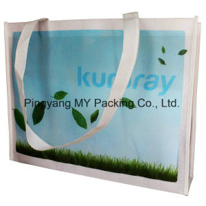 OEM Order Promotional Nonwoven PP Woven Shopping Bag (my07181) pictures & photos