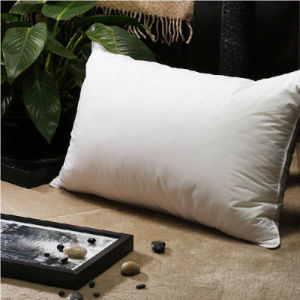 Super Soft Household Down Pillow