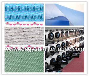 Multi Layers Paper Machine Cloth pictures & photos