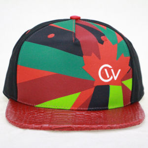 Printing 5 Panel Snapback Cap 5 panel Cap pictures & photos