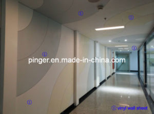 Door and Wall Protectors Rigid Sheet for Hospital pictures & photos