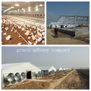 Prefab Poultry Farm House with All Poultry Equipment pictures & photos