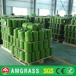 China Synthetic Grass for Outdoor Garden, SGS Certificate pictures & photos