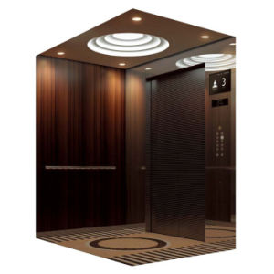 Top Brand Srh Passenger Elevator pictures & photos