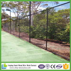 Galvanized Chain Link Fence with Top Rail pictures & photos