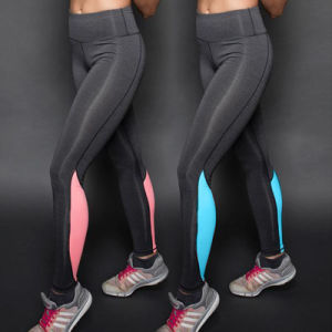 Yoga Running Elastic Sports Fitness Leggings pictures & photos