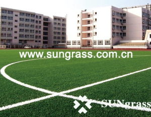 Sport or Football Artificial Grass (Thiolon-E588) pictures & photos