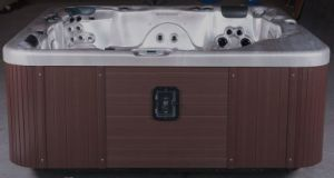 2015 New Arrival European Hot Tub for 5 People (ZR6001)