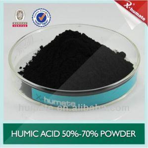 70%Min Powder Leonardite pictures & photos